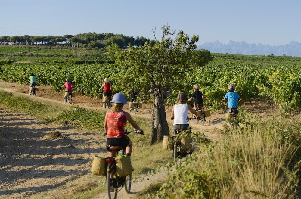 Events amongs vineyards-Catalonia