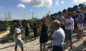 Ecofarm visit