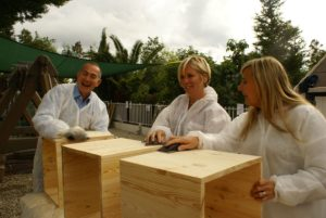 CSR activities for corporate events
